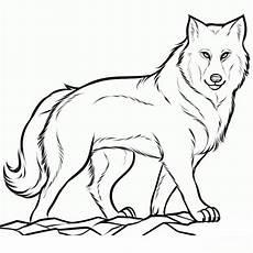 sch 246 ne ausmalbilder malvorlagen wolf ausdrucken 2