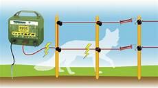 clotures electriques pour animaux cloture electrique