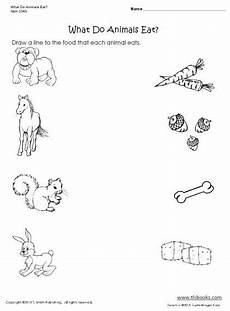 plants and animals worksheets for kindergarten 13507 quot what do animals eat quot worksheet with images animal worksheets