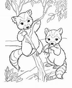 all animals coloring pages and print for free