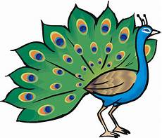 Free Peacock Clipart