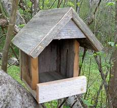 mourning dove house plans shelter assentamento r 250 stico para robins manh 227 por