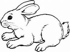 Malvorlagen Hasen Kaninchen Ausmalbilder Kaninchen Ausmalbilder Tiere Ausmalbild