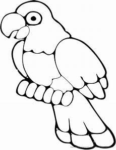 genial papagei ausmalbilder ausdrucken top kostenlos