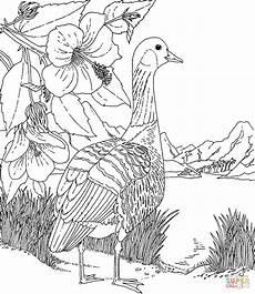 Ausmalbilder Hawaii Blumen Ausmalbild Hawaiigans Und Hibiskus Staatsvogel Und
