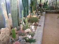 giardini piante grasse per esterno aiuole piante grasse cerca con aiuole kalami