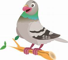 Pigeon Picture Kartun Burung Dara Welcome To
