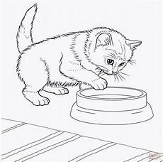 Malvorlagen Baby Katzen Baby Katzen Ausmalbilder Neu 27 Neu Katzen Ausmalbilder