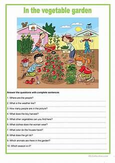 Picture Description In The Vegetable Garden Worksheet