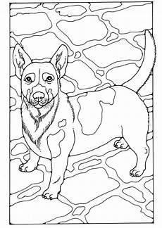 malvorlage hund russel malvorlage russel kostenlose ausmalbilder zum