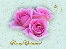 christmas wallpapers roses