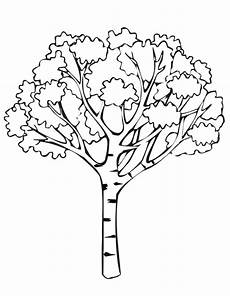 autumn coloring page autumn tree