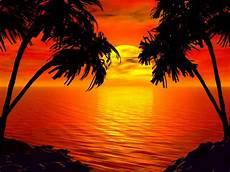 41 hawaiian sunset wallpaper on wallpapersafari