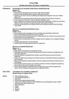big data hadoop resume sles velvet jobs