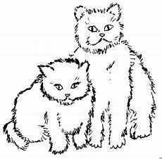 Katzen Malvorlagen Chords Zwei Suesse Katzen Ausmalbild Malvorlage Tiere