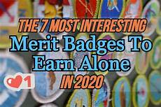 the 7 most interesting merit badges to earn at home in 2020