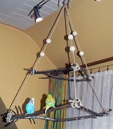Wellensittich Spielzeug Selber Bauen - vogelspielplatz wellensittichspielplatz selbst basteln