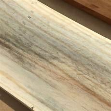 Ist Das Schimmel Auf Dem Holz Muss Ich Das Abschleifen