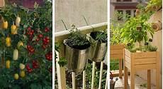 6 conseils pour faire potager sur balcon