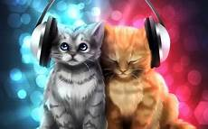Cool Cats Other Abstract Background Wallpapers On