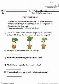 plants worksheets for primary 13486 90 best images about sci grade 3 on eyfs photosynthesis and anchor charts