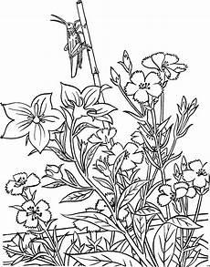 heuschrecke mit pflanzen ausmalbild malvorlage blumen