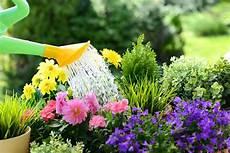 fiori profumati da giardino cinque fiori profumati da piantare in aprile ville casali