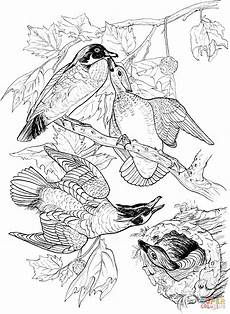 wood animals coloring pages 17194 wood ducks coloring page free printable coloring pages