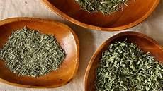 conserver herbes aromatiques comment conserver ses herbes aromatiques herbes