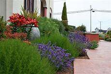 Mediterranean Garden Design How To Create A Tuscan Garden
