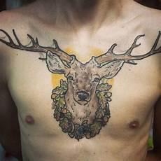 120 nobel deer bedeutung und designs wilde natur