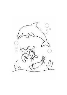meeresschildkr 246 te delfin ausmalen ausmalbilder kinder