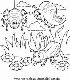 ausmalbilder insekten free ausmalbilder