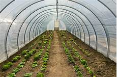 hoop house greenhouse plans hoop house plans best on the internet free