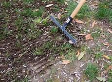 enlever mousse gazon rateau regarnir pelouse conseils coaching jardinage