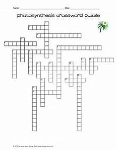 photosynthesis crossword puzzle by biology roots tpt