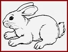 janbleil 187 ausmalbilder kaninchen besten ausmalbilder