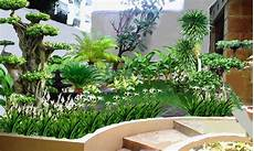 Desain Taman Depan Pagar Rumah Home Desaign