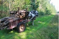 deux chevaux en bois trait mara 238 cher stage semaine maraichage et traction