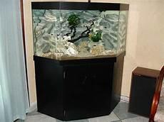 meuble d angle pour aquarium d 233 cor aquarium d angle