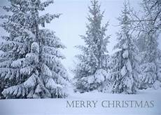 merry christmas zeandre diary