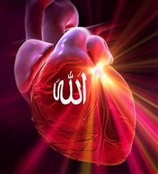 Zikrullah Penenang Hati Dan Jiwa Qalbunsalim