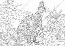 australia animals coloring pages 16900 australian kangaroo wallaby family 2 coloring pages animal