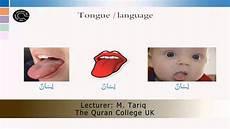 intermediate arabic worksheets 19833 quran arabic intermediate level lesson 6