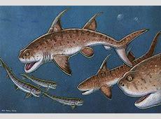 port aransas fishing report