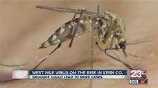 West Nile Virus Activity On The Rise