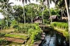 Mesmerizing Bambu Inda Resort mesmerizing bambu inda resort bali house design bamboo