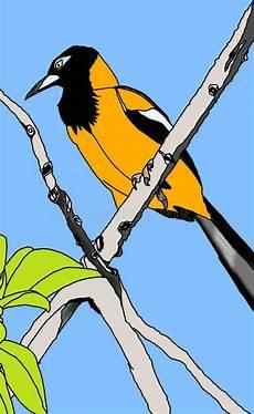 turpial en caricatura turpial illustration stock illustration illustration of tree 49470398