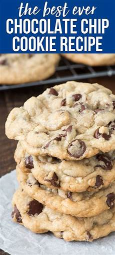 best chocolate chip cookie recipe seriously for