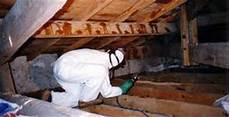 traitement des bois de charpente le traitement de charpente termitamor
